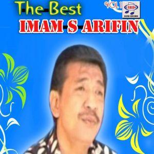 Imam S Arifin